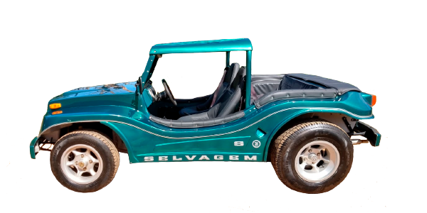 Buggy Selvagem