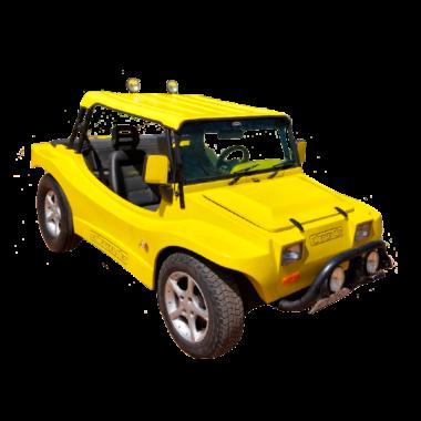 Buggy Fibravan
